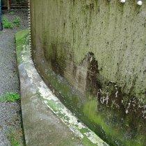 Przecieki wody i rozwój glonów wzdłuż podstawy skorodowanego zbiornika